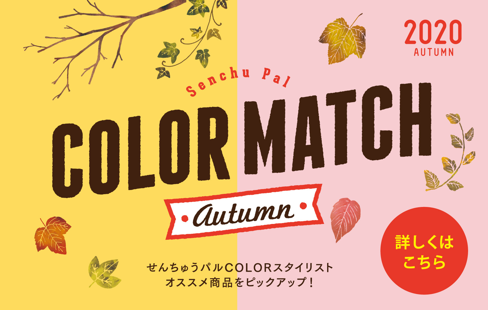 COLOR MATCH オータム